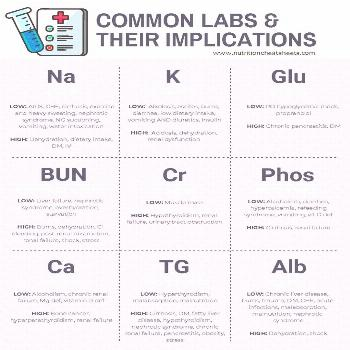 Common Clinical Nutrition Labs | Nutrition Cheat Sheets, LLC Labs